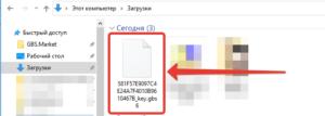 Скачанный файл ключа лицензии для программы GBS.Market - автоматизация торговли