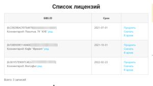 Список лицензий в личном кабинете пользователя GBS.Market